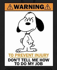 just a little bird humor ~ Snoopy & Woodstock Work Quotes, Cute Quotes, Funny Quotes, Funny Memes, Hilarious, Meu Amigo Charlie Brown, Charlie Brown And Snoopy, Peanuts Quotes, Snoopy Quotes