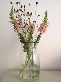 Flowers in a jar vase