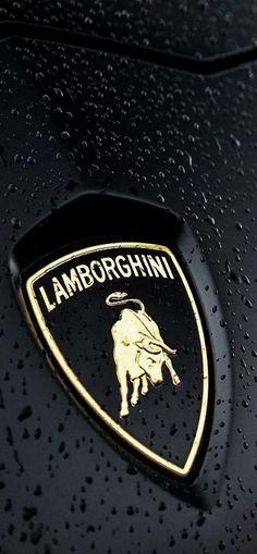 Lamborghini ♥✤ | KeepSmiling | BeStayClassy