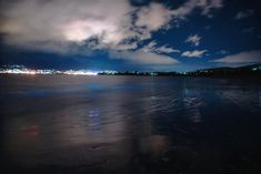 Singly, each individual emits a tiny speck of light, but en masse, they can light up a beach with an eerie other-worldly glow… Can Lights, Light Up, Natural Beauty, Sparkle, The Incredibles, Sea, Sunset, Water, Outdoor
