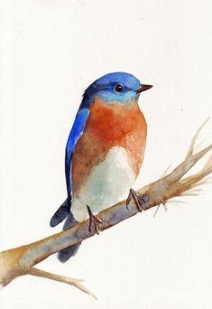 Bluebird #watercolorarts