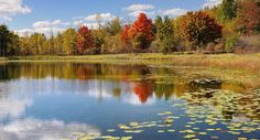 A little late season Bass Fishing anyone? Brockway lake , Mecosta County