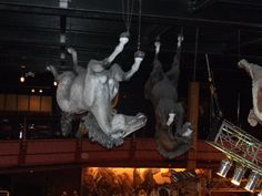 The picture is not upside down-the horses are hanging from the ceiling :)  Wild Horse Saloon, Nashville TN