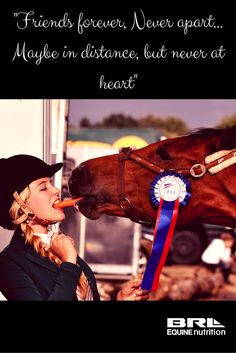 Friends forever horse and rider