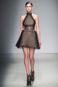 Iris van Herpen A/W 2105 Collection http://www.style.com/slideshows/fashion-shows/fall-2015-ready-to-wear/iris-van-herpen/collection/10