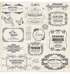 Calligraphic design elements and page decoration vector 1223510 - by woodhouse84 on VectorStock®