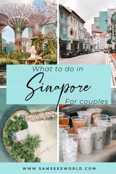 Top things to do in Singapore for couples! Here is a list of all the best and greatest things to do in Singapore as lovers. These romantic options include Marina Bay Sands, Supertree Grove, Universal studios and more. European Travel, Asia Travel, Travel List, Travel Goals, Travel Advice, Travel Guides, Singapore Travel Tips, Singapore Itinerary, Marina Bay Sands