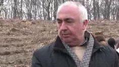 Mafia Padurilor din Cluj era sustinuta politic Mafia, Dna, Gout