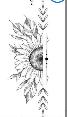Art Drawings Beautiful, Art Drawings Sketches Simple, Pencil Art Drawings, Doodle Drawings, Drawing Ideas, Sketches Of Flowers, Cool Simple Drawings, Simple Designs To Draw, Pencil Drawing Inspiration