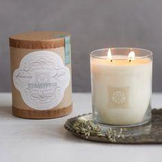Linnea's Lights Candle, Eucalyptus