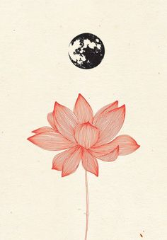 Yoga Art Illustration Lotus Flowers Ideas For 2019 Art And Illustration, Kunst Tattoos, Lotus Tattoo, Motif Floral, Art Inspo, Cool Art, Flower Power, Artsy, Sketches