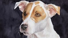 I specialize in commissioned portraits of pets and people, custom chalkboards and many other custom art projects. Custom Art, Art Boards, Art Projects, Daisy, My Arts, Watercolor, Portrait, Pets, Animals