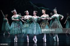 The Australian Ballet presents The Dream, a triple bill of works by master choreographer Frederick Ashton, during a dress rehearsal at the Opera House in Sydney on April The performance will be running from April to May AFP PHOTO / Saeed KHAN Theatre Costumes, Ballet Costumes, Dance Costumes, Ballet Art, Ballet Dancers, Australian Ballet, Pretty Ballerinas, Ballerina Dancing, Rehearsal Dress