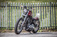 Hd Sportster, Custom Harleys, Bobber, Chopper, Harley Davidson, Anniversary, Motorbikes, Choppers