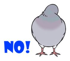 Cute Pigeon by Studio Pigeon Cute Pigeon, Back Hurts, Chat App, Line Sticker, My New Room, Pose Reference, Cute Animals, Birds, Entertaining