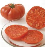 "Brandywine OG Tomato seeds... 5 start reviews. $3.95 For seeds, OG means ""organically grown"" and signifies seeds harvested from plants grown organically..."