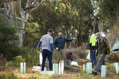 Community Planting Day at Bethany