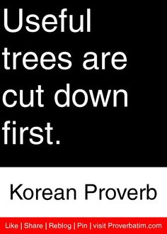 Useful trees are cut down first. - Korean Proverb #proverbs #quotes