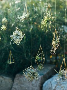Siren Floral Co   Joel Bedford Photography   Click through to see more suspended floral designs