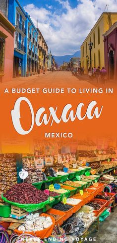 Wonder how much it costs to live in Oaxaca, Mexico? Here's our full budget breakdown of living there as digital nomads. #digitalnomad #oaxaca