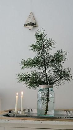 Pine Tree Branch In Mason Jar Centerpiece