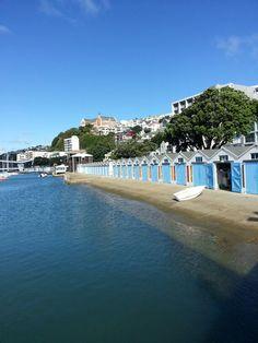 Wellington waterfront,  Oriental Bay,  New Zealand. Photo by Louise