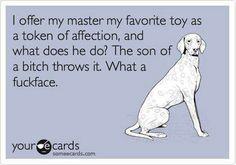 Pets hahahahahaha
