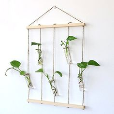 Ivolador Crystal Glass Wall Hanging Test Tube Vase in Wooden Frame for Hydroponic Plants Office Home Decoration