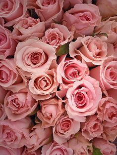 A bunch or roses! Always cute and romantic & these are : Perfectly Pink!