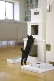 Kitty condo