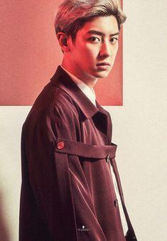 180130 #CHANYEOL - 'COUNTDOWN' DVD Ver