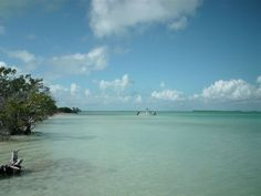 Key Largo Camping and information