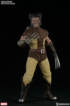 Joining our growing Marvel Sixth Scale figure collection, is the Sideshow Collectibles mutant hero, Wolverine! Description from sideshowtoy.com. I searched for this on bing.com/images