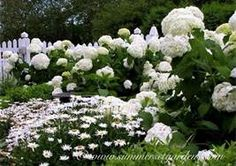 White Flower Garden Designs