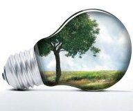 Cinco nuevas empresas listas para recibir sello de carbono neutralidad