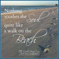 Assume GOODWILL COASTAL / Seaside Dunes Fence by BeachCottageLife