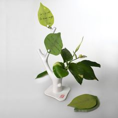 note tree- comes with leaf notepad and magnets and place for a REAL plant.