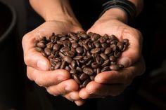 WEBNODE :: Sito dedicato all'Arte del Caffè :: by Mel Precious Tea and Coffee…