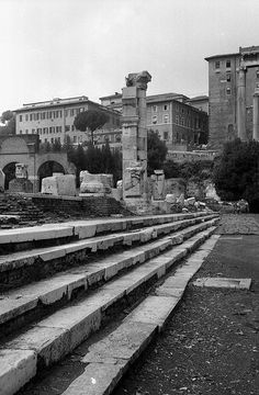 Basilica Julia (Roman Forum)    The steps on the north side of the basilica facing the forum. Photo from 1976. In the background are the structures on the Capitoline Hill. Some of the steps were carved with gaming boards that can still be seen (cf. the picture link below). The roadbed of the Sacra Via rises slightly as it approaches the Capitoline Hill; that is why the number of steps diminishes as one moves along the facade of the basilica.
