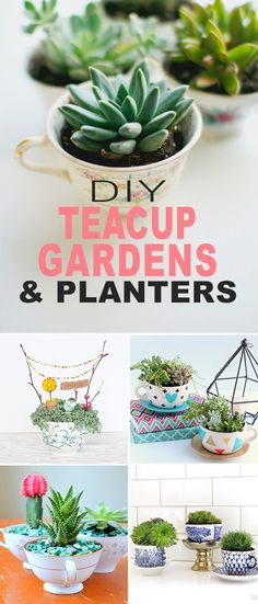 DIY Teacup Gardens and Planters! • Click thru to learn more about how to make these gorgeous DIY teacup gardens! Lots of projects and tutorials! #DIY #teacupgardens #teacupplanters #DIYteacupgardens #DIYteacupplanters #gardening #DIYgardenprojects