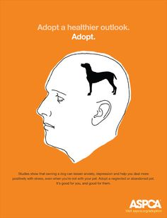 """In this next ad by the ASPCA we see the communication objective is to change consumer behavior by encouraging the public to adopt animals instead of having them bred. The headline, """"adopt a healthier outlook"""", works with the illustration such that the latter aims to give the reader a visual example of what the former encourages, which is to embody the more animal-friendly mindset that is achieved through adoption"""