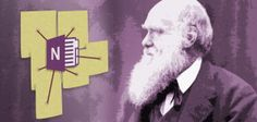 How to Use OneNote Like a World Famous Scientist