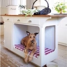 Love this.....great space for our canine family member :)