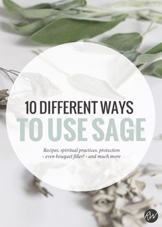 Burning sage is a common spiritual practice, but did you know there are a slew of other amazing ways you can use this plant? | Rogue Wood Supply
