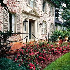 Ferns , azaleas, overall whole simple yet elegant design with patio and railing