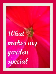 What makes my garden special