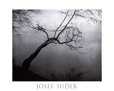 Josef Sudek  I love this Czech artist and his neo romantic photography.   The mood is melancholy