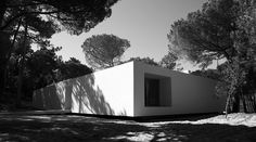 House in Colares by Frederico Valsassina.