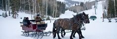 Its lovely weather for a sleigh ride together with you - here in Deer Valley!  A perfect complement to the Fireside Dining experience at Empire Canyon Lodge.