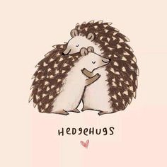 Hedgehugs ❤️